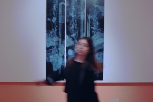L'incongruo naturale-Pinacoteca d'arte Contemporanea di Gaeta - 1 (9)